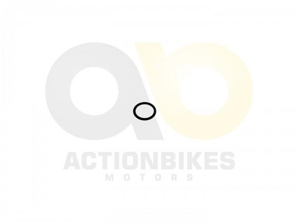 Actionbikes Shineray-XY250ST-9E--SRM--STIXE--XY200STII-Dichtring-1825-fr-Welle-Kipphebel 31343435332