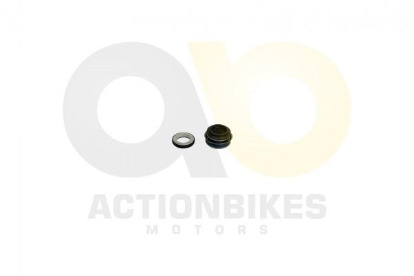 Actionbikes Shineray-XY250SRM-Wasserpumpe-Dichtung-Set 31393230302D3131342D30303032 01 WZ 1620x1080