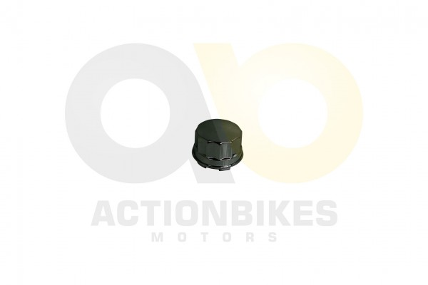 Actionbikes Renli-RL500DZ-Radkappe 34323730362D424448302D30303030 01 WZ 1620x1080