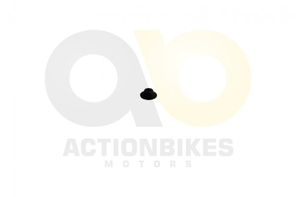 Actionbikes Shineray-XY200ST-9-Ventilscheibe 4759362D3132352D303030333131 01 WZ 1620x1080