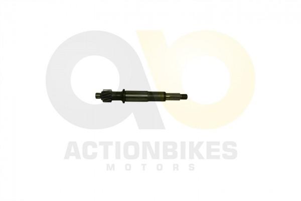 Actionbikes Motor-250cc-CF172MM-Eingangswelle-Ausgangsgetriebe 32333431312D534343302D30303030 01 WZ