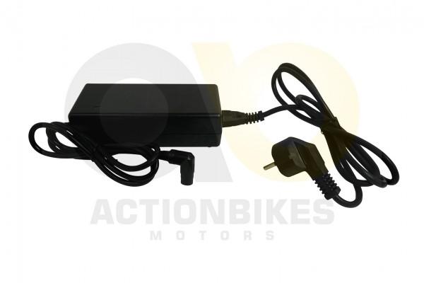 Actionbikes TXED-Alu-Elektro-Fahrrad-City-4000HT-Ladegert-42V-20A-Einpin-Stecker 545845442D48542D303