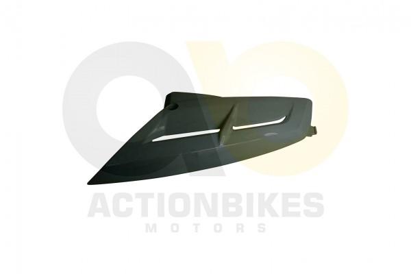 Actionbikes Dinli-450-DL904-Verkleidung-Khler-rechts-wei 463135303039392D3036 01 WZ 1620x1080