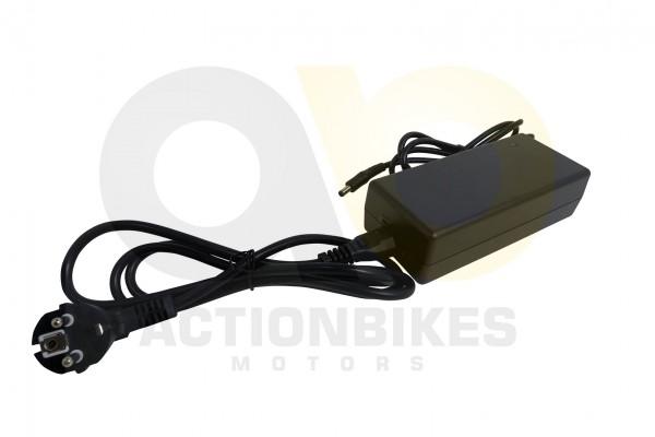 Actionbikes TXED-Alu-Elektro-Fahrrad-Trekking-M-Ladegert-42V-20A-Einpin-Stecker-E-Forward-F---City-8