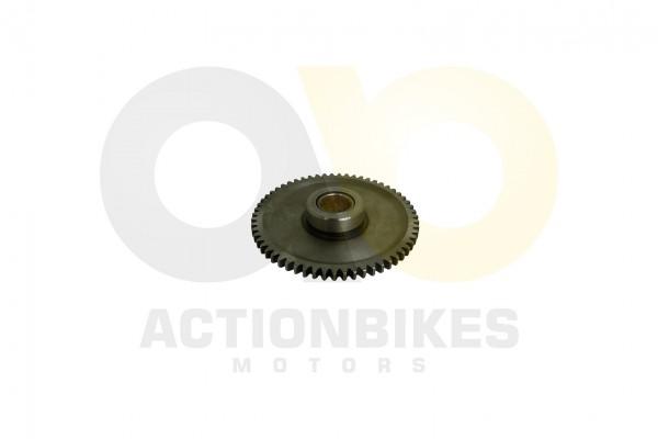 Actionbikes Shineray-XY250ST-9C-Anlasserzahnrad-gro 4A4C3137322D303030393035 01 WZ 1620x1080