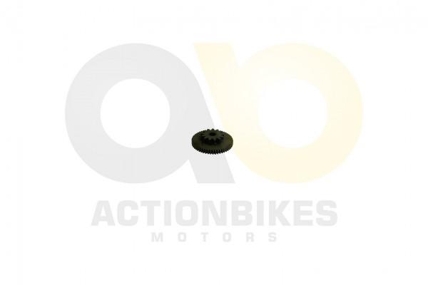 Actionbikes Motor-250cc-CF172MM-Anlasser-Doppelzahnrad-gro 32383130312D534248302D30303030 01 WZ 1620