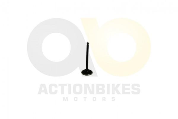 Actionbikes Motor-260cc-XY170MM-Einlaventil 31323730313032383031 01 WZ 1620x1080