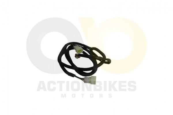 Actionbikes XYPower-XY1100UTV-Kabelbaum-Rcklicht 5731303031303630 01 WZ 1620x1080