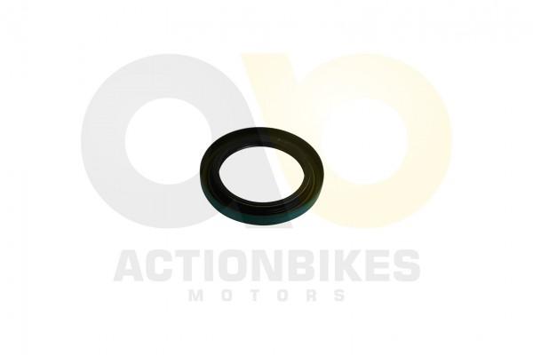 Actionbikes Simmerring-50708-Differential-Ausgang-hinten-Feishen-Hunter-600ccKingwell-KWS14Q-300 382