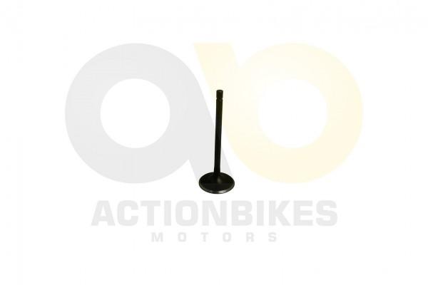 Actionbikes Shineray-XY200STII-Einlaventil 31343731302D3130302D30303030 01 WZ 1620x1080