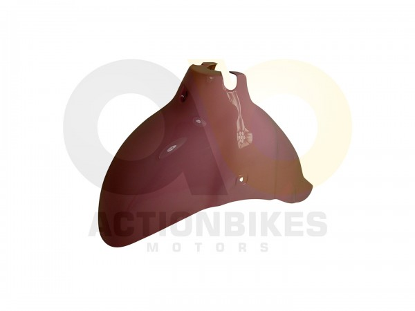 Actionbikes Znen-ZN50QT-HHS-Schutzblech-vorne-pink 36313130302D444757322D393030302D31 01 WZ 1620x108