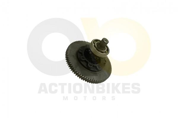 Actionbikes LJ276M-650-cc-Differential-einzeln 32333033303137 01 WZ 1620x1080