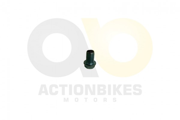Actionbikes Shineray-XY150STE--XY200ST-9-GO-TO-BOLT 4759362D313530412D303031353035 01 WZ 1620x1080