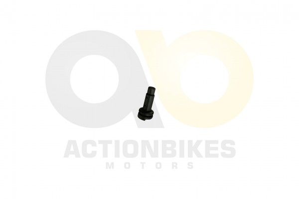 Actionbikes Shineray-XY250SRM-Welle-fr-Nockenwellenzahnrad 31343133322D3037302D30303031 01 WZ 1620x1