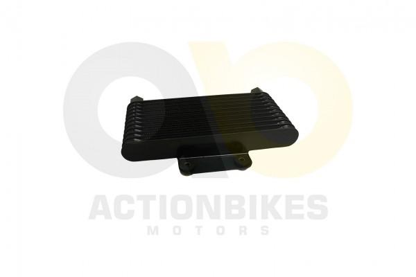 Actionbikes Shineray-XY200ST-6A-lkhler 3137303430303334 01 WZ 1620x1080