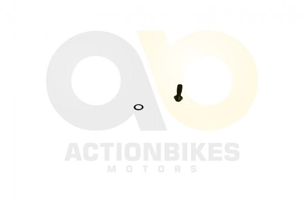 Actionbikes Shineray-XY200ST-6A-lkhler---Hohlschrauben-mit-Dichtscheibe 31373036303039382D31 01 WZ 1