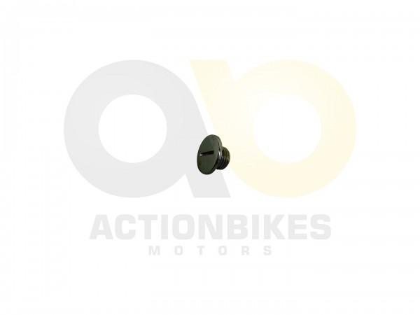 Actionbikes Mini-Quad-110cc--125cc----Kleiner-Deckel-Lichtmaschinengehuse-OT-Markierung 333535303031