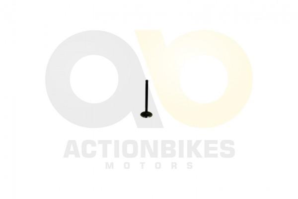 Actionbikes Dinli-DL801-Auslassventil 453133303031352D3030 01 WZ 1620x1080