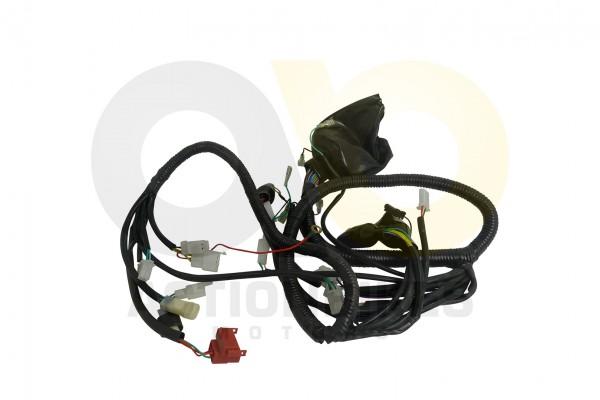 Actionbikes Kabelbaum-Egl-Mad-Max-300 393931313037312D34 01 WZ 1620x1080