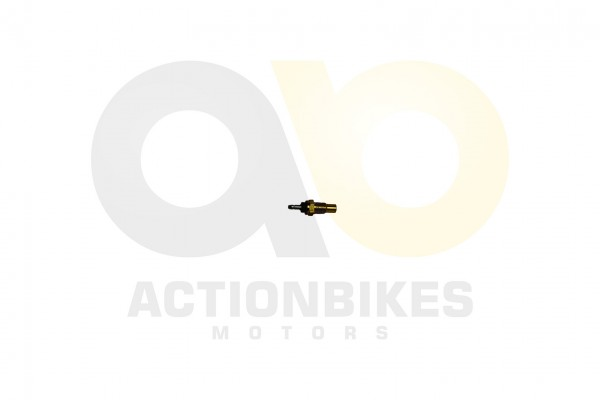 Actionbikes Lingying-250-203E-Temperaturfhler-in-Thermostatgehuse-Mad-Max-250-Speedstar-Startrike-Sp