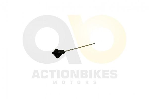 Actionbikes Shineray-XY350ST-EST-2E-lmestab 31343330392D504530332D30303030 01 WZ 1620x1080