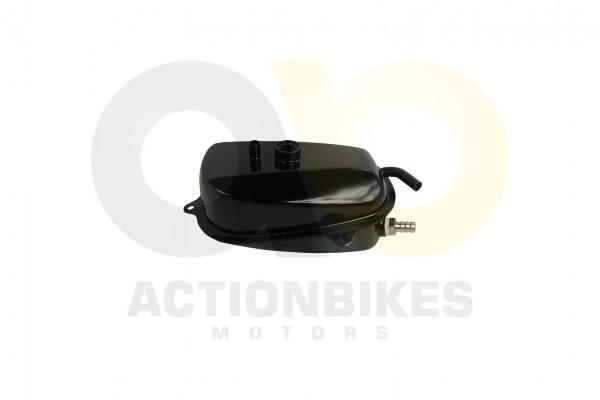 Actionbikes Dinli-450-DL904-l-Tank 463135303035342D3530 01 WZ 1620x1080