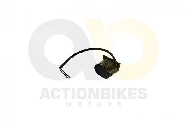 Actionbikes JY250-1A--250-cc-Jinyi-Quad-Nummernschildbeleuchtung 4A512D3235302D31303338 01 WZ 1620x1