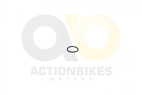 Actionbikes Shineray-XY250STXE-O-Ring353-fr-Deckel-lfiltersieb 31353436322D3037312D30303030 01 WZ 16
