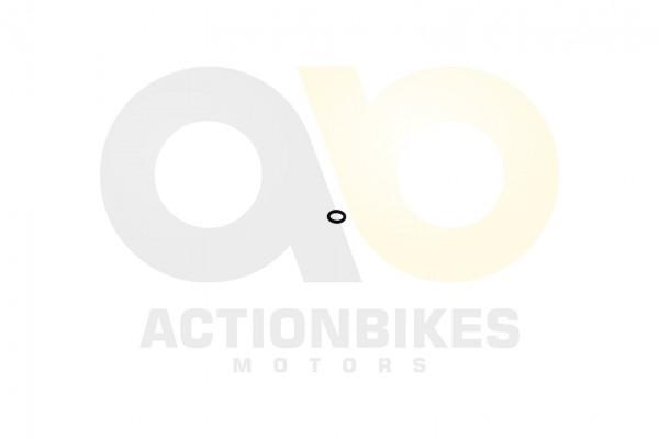 Actionbikes Shineray-XY350ST-EST-2E-Kipphebel-Bolzen-Dichtring-9x2 39303130312D313030393030303032303