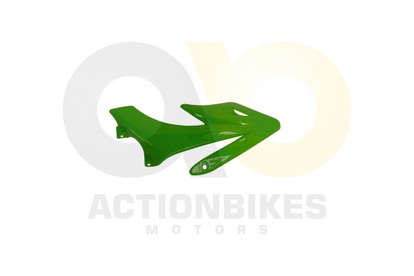 Actionbikes Mini-Crossbike-Delta-49-cc-2-takt-Verkleidung-vorne-links-Grn 48442D3130302D3132312D31 0