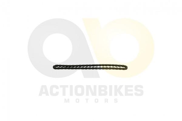 Actionbikes Feishen-Hunter-600cc-Steuerkette-hinterer-Zylinder 322E332E31342E30303130 01 WZ 1620x108