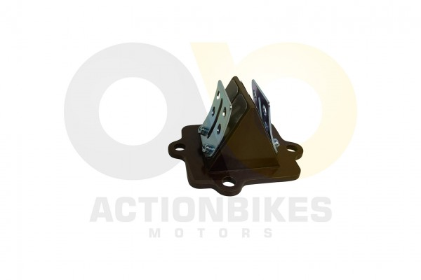 Actionbikes 1PE40QMB-Motor-50cc-Vergaseransaugmembran 31343130302D4B4641312D39313030 01 WZ 1620x1080