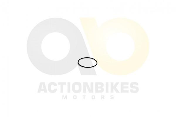 Actionbikes Feishen-Hunter-600cc-Dichtung-Differenzial-Eingang-O-Ring-66x35 302E30362E3031383030 01