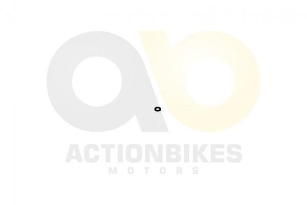 Actionbikes XYPower-XY500ATV-Wasserpumpenschaufelrad-Beilagscheibe-Kupfer 393531322D303731323030 01