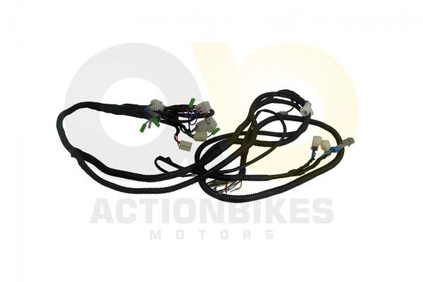 Actionbikes Kabelbaum-Haupt-Luck-Buggy-LK260 33323130302D42444A312D45303030 01 WZ 1620x1080