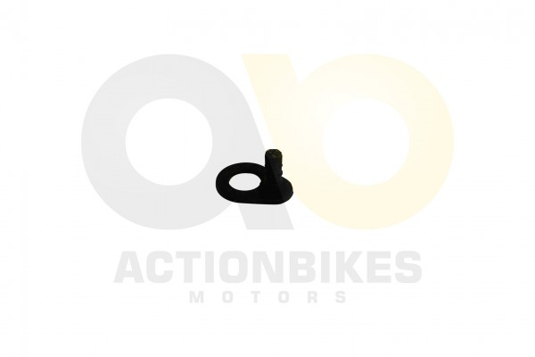 Actionbikes Shineray-XY125GY-6-Gangsensor-Halteplate--XY125-11 3131303430303630 01 WZ 1620x1080