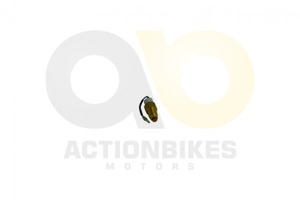 Actionbikes Dinli-450-DL904-Thermoschalter 3235372D35363030322D3031 01 WZ 1620x1080