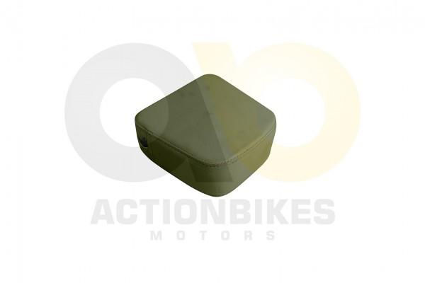 Actionbikes Znen-ZN50QT-HHS-Sissybar-wei-Polster 38313531352D4447572D393030302D412F422D31 01 WZ 1620