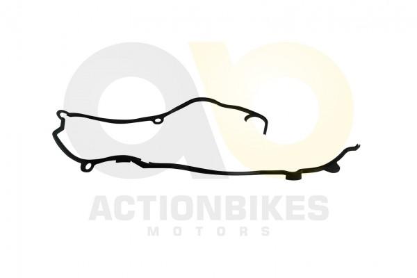 Actionbikes Motor-250cc-CF172MM-Dichtung-Antriebsgehuse-Gummi 31313335312D534343302D30303030 01 WZ 1
