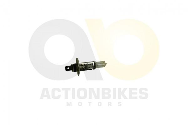 Actionbikes Glhlampe-Halogen-H1-12V55W 474C303030303035 01 WZ 1620x1080