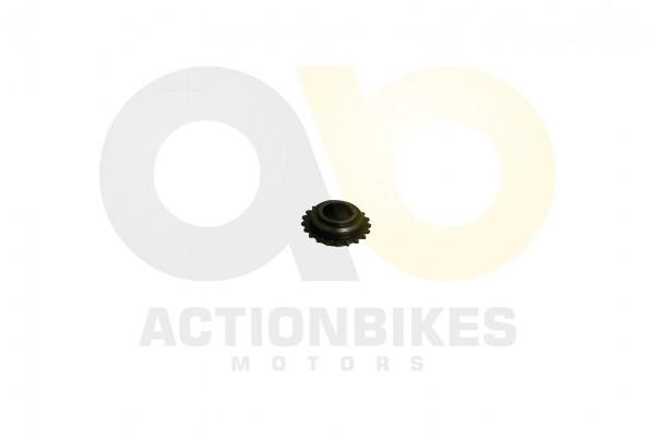 Actionbikes LJ276M-650-cc-Steuerkettenrad-Kurbelwelle 323730512D303430303541 01 WZ 1620x1080