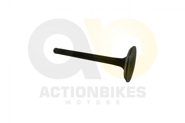 Actionbikes Jinling-50cc-JL-07A-Einlaventil-Miniquad-110125cc 3134303330303030332D30303031 01 WZ 162