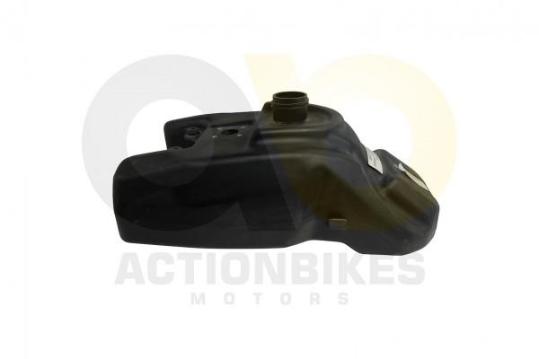 Actionbikes Shineray-XY250SRM-Tank 31363630302D3531362D30303030 01 WZ 1620x1080