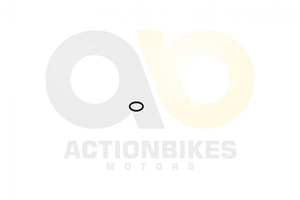 Actionbikes Shineray-XY250SRM-Dichtring-20-x-25-fr-Welle-Nockenwellenzahnrad 31343133362D3037302D303