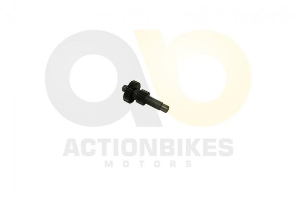 Actionbikes Motor-260cc-XY170MM-Getriebewelle-Rckwrtsgang 31323730323530343031 01 WZ 1620x1080