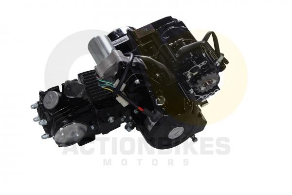 Actionbikes Motor-110-cc-S-5S-8S-12-Gang-11--152FMH--Anlasser-oben--Luftgekhlt 33353530303038 03 WZ