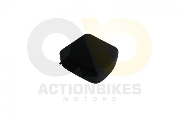 Actionbikes Znen-ZN50QT-HHS-Sissybar-schwarz-Polster 38313531352D4447572D393030302D412F42 01 WZ 1620