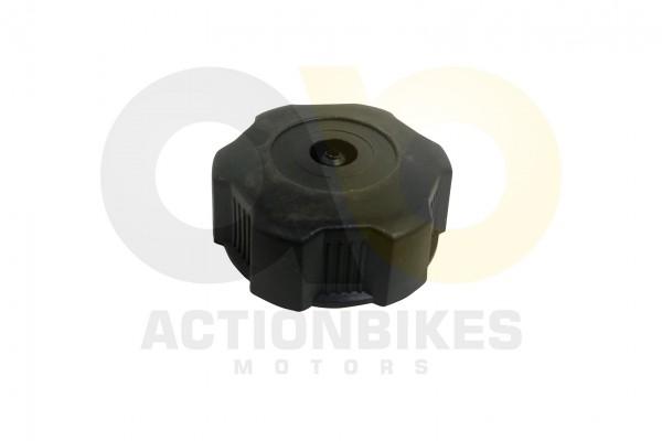 Actionbikes Mini-Quad-110-cc-Tankdeckel-S-5S-12S-10S14 333535303032342D31 01 WZ 1620x1080