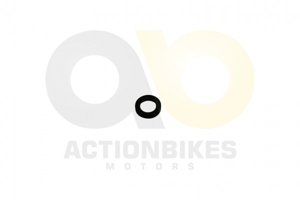 Actionbikes Simmerring-12205-Wasserpumpenwelle 313030302D31322F32302F35 01 WZ 1620x1080