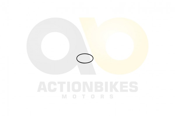 Actionbikes Feishen-Hunter-600cc-Dichtung-Ventil--Service-deckel-O-Ring-575x23 382E332E30312E3030363